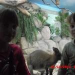 фотографии 2012 328