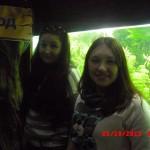 фотографии 2012 339