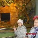 фотографии 2012 424