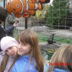 фотографии 2012 446