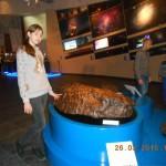 коллекция метеоритов
