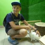 Кролики-это не только ценный мех!
