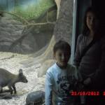 фотографии 2012 334