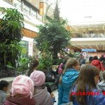 фотографии 2012 394