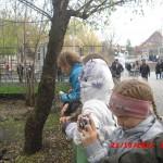 фотографии 2012 449