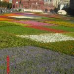 выставка цветов на Красной площади